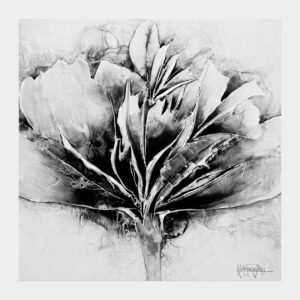 Black and White Passion Flower – Limited Edition Print