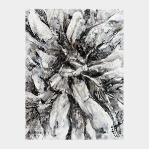 Black and White Garden – Limited Edition Print